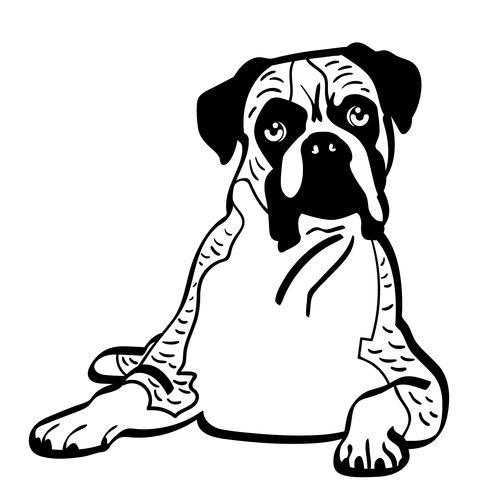 vettore di cane eps boxer