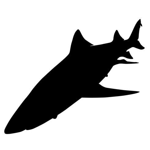 tubarões vector eps
