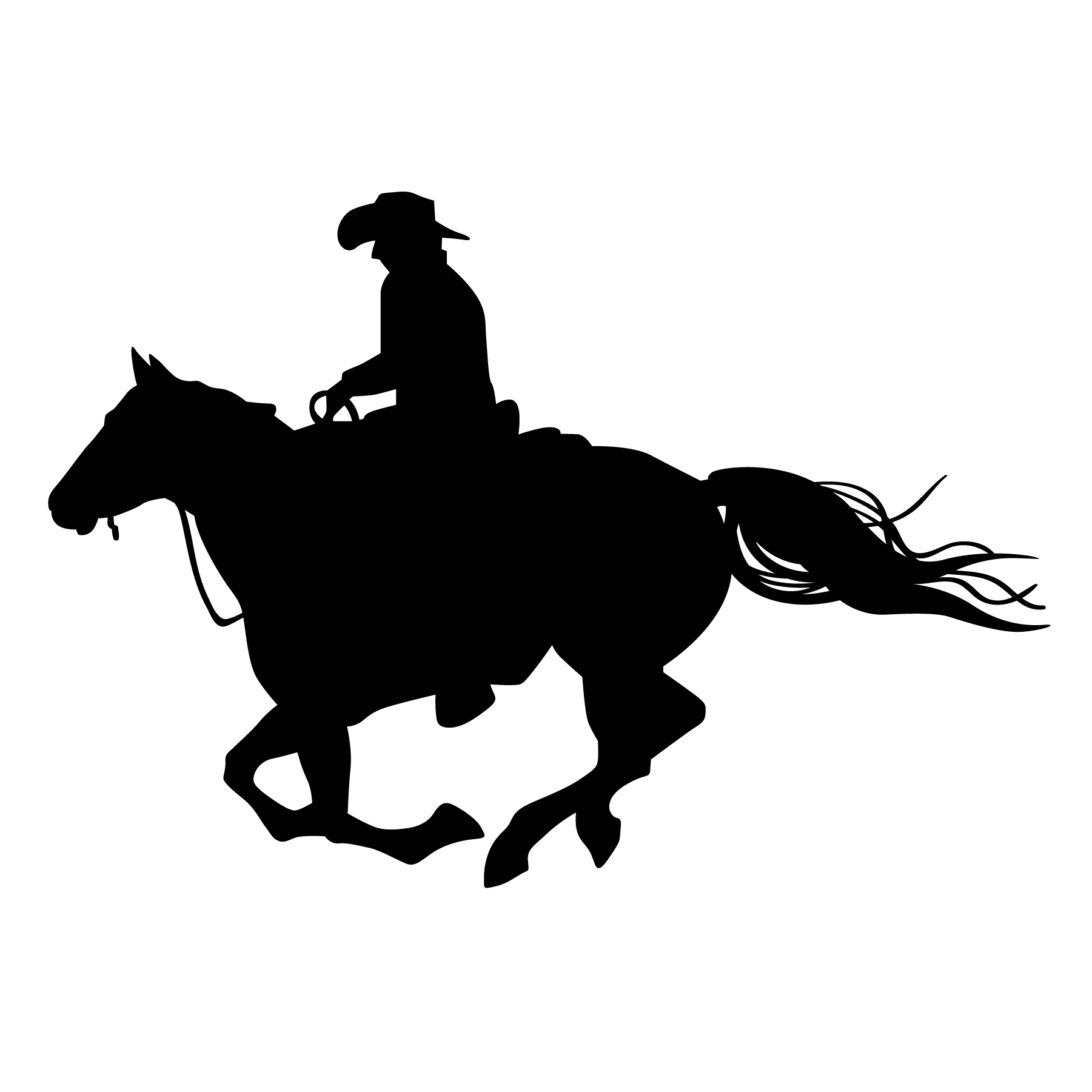 riding a horse silhouette