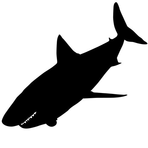 requins vecteur eps