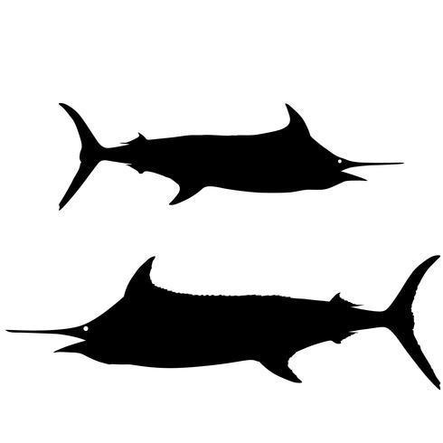 Schwertfisch und Segelfisch Vektor Eps