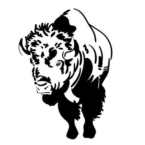bison vektor eps