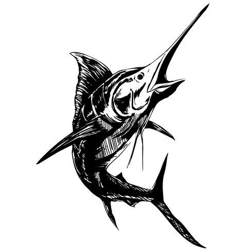 swordfish and sailfish vector eps