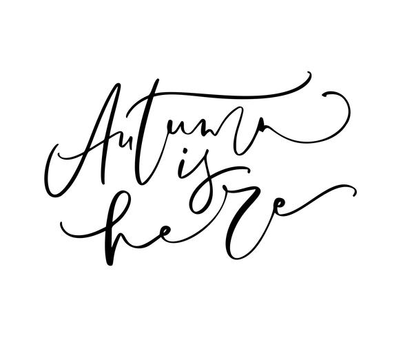 El otoño está aquí poniendo letras al texto de la caligrafía aislado en el fondo blanco. Dibujado a mano ilustración vectorial Elementos de diseño de cartel en blanco y negro.