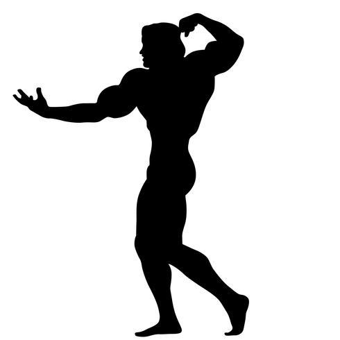 Bodybuilding wirft Schattenbild auf