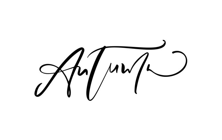 Autumn lettering calligraphy text isolated on white background. Hand drawn vector illustration. Black and white poster design elements
