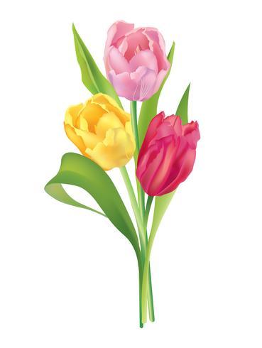 Blumenstrauß Blumenrahmen. Sommer Grußkarten Hintergrund