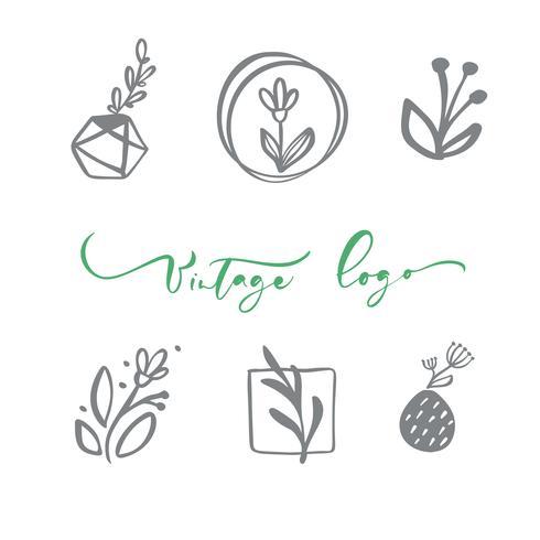 Set med vektor skandinavisk blommig logotyp. Handritad ikon blomma organisk kosmetisk, blomsterhandlare bröllop, heminredning. Vintage Logo text