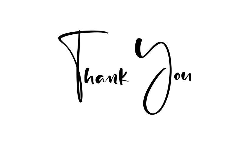 Thank you hand drawn calligraphic lettering text. Handwritten vector illustration for greeting card, print on mug, tag