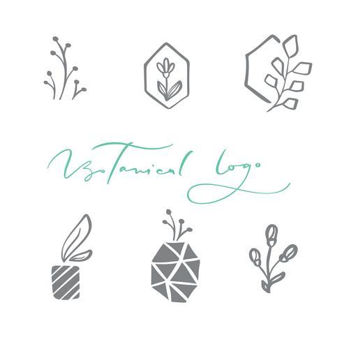 Set med vektor skandinavisk blommig logotyp. Handritad ikon blomma organisk kosmetisk, blomsterhandlare bröllop, heminredning. Botanisk logotyp text