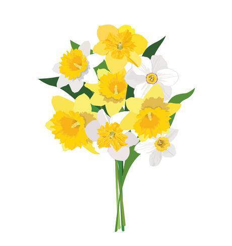 Blombukett. Blomram. Blomstra hälsningskort. Sommarinredning