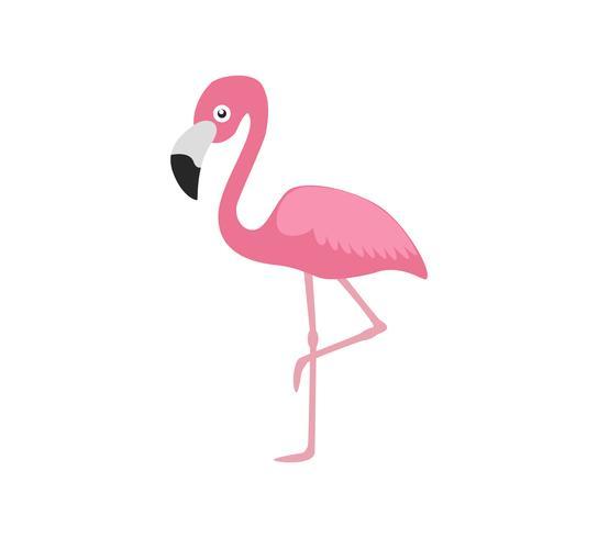 Vectorillustratie roze die flamingo op witte achtergrond wordt geïsoleerd