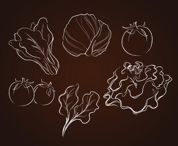 vegetables drawing