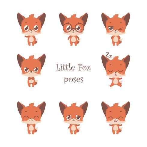 Samling av söt liten räv poserar
