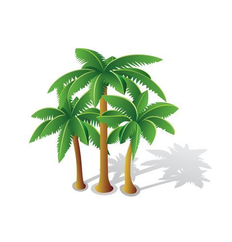 Tropiska palmer vektor