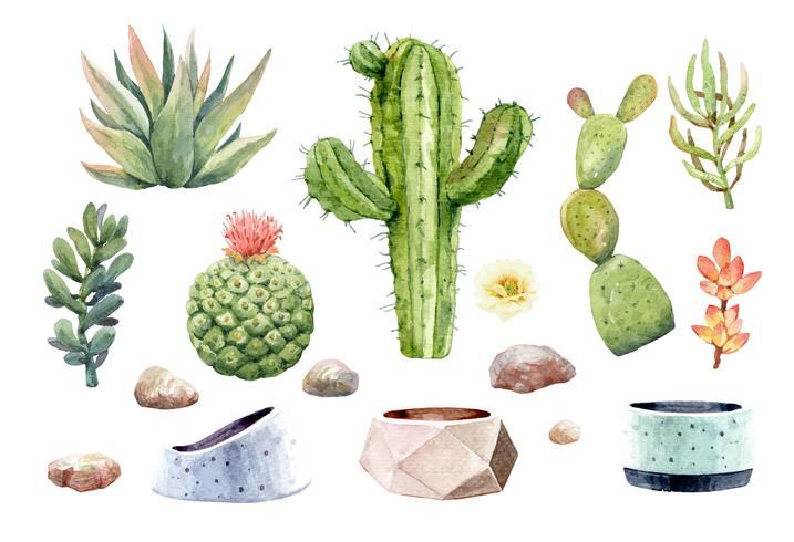 De cactuscactussen van waterverf individuele elementen en succulents met potten