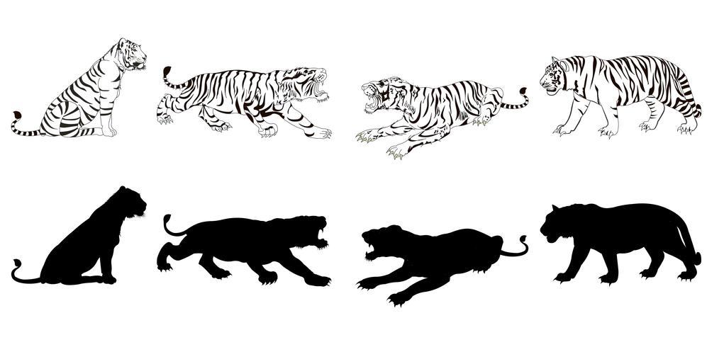 Silueta de tigre vector
