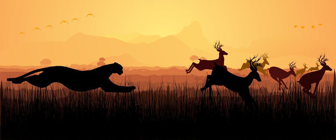 Cheetah Chasing Deer silhouette