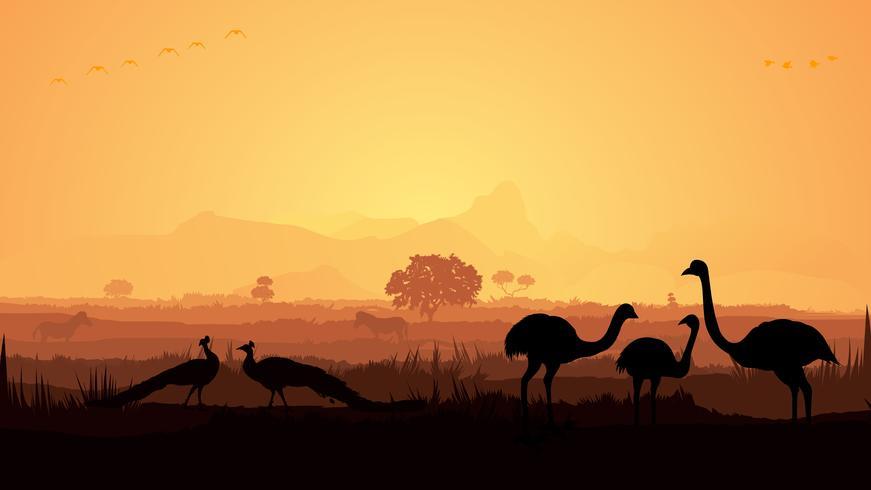 birds in jungle silhouette