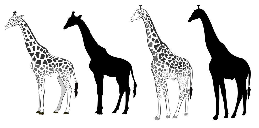 Sagoma di giraffa