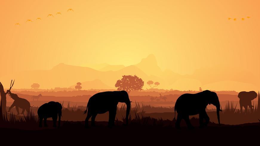 Silhueta de elefante vetor