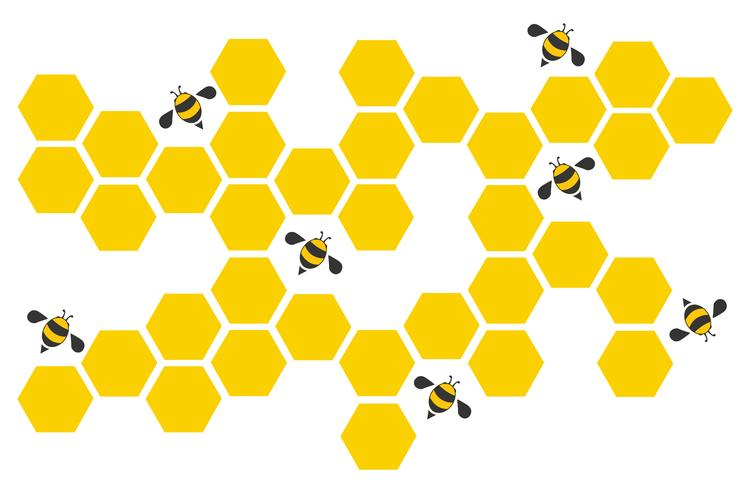 Hexagonbienenstockdesignkunst und Raumhintergrundvektor EPS10