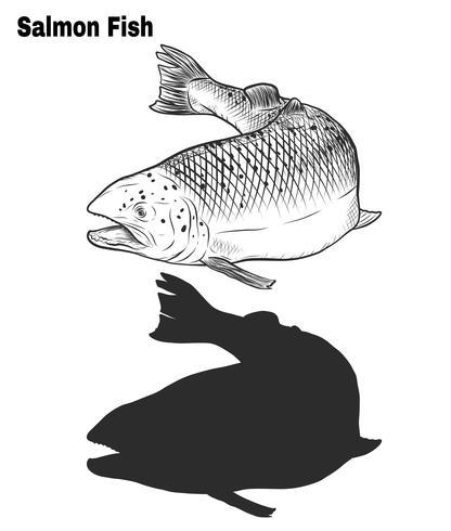 Arte de salmão altamente detalhada em estilo de arte de linha vetor
