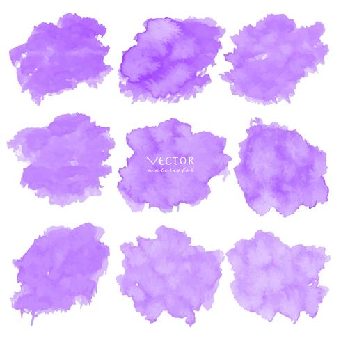 Set of purple watercolor on white background, Brush stroke watercolor, Vector illustration.