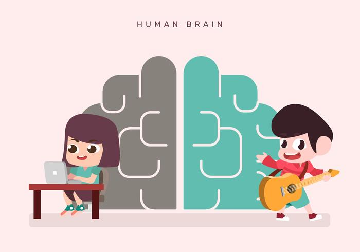 Cute Kids Character On Human Brain Hemispheres Vector Illustration