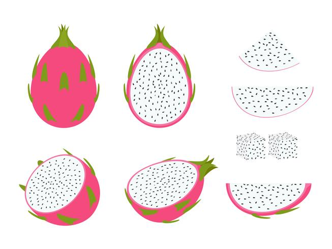 Set of dragon fruit isolated on white background - Vector illustration