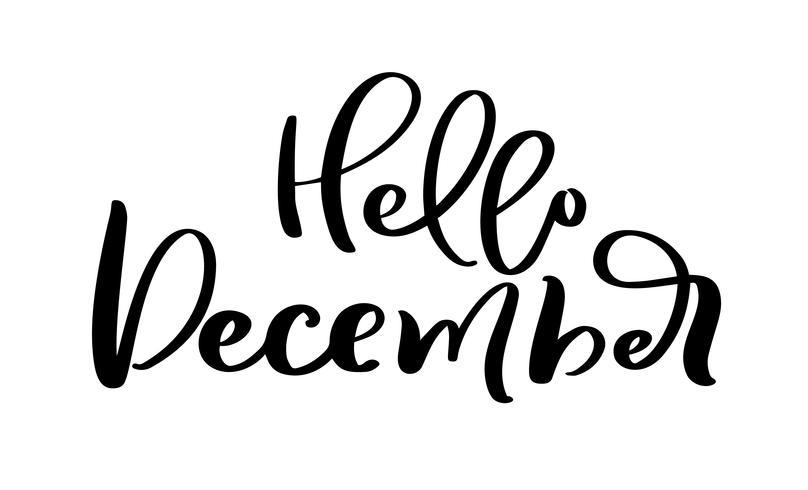 Hola diciembre mano dibujado texto de letras decorativas en aislado sobre fondo blanco para el calendario, planificador, diario, decoración, etiqueta, cartel vector