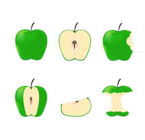 Vectorillustratie van vastgestelde groene rijpe die appelen op witte achtergrond worden geïsoleerd