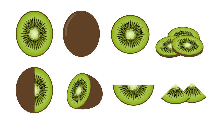 Conjunto de fruta de kiwi fresca aislada sobre fondo blanco - ilustración vectorial