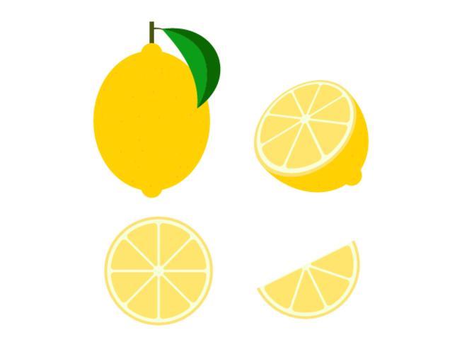 Conjunto aislado de vector de fruta de limón fresco sobre fondo blanco - ilustración vectorial