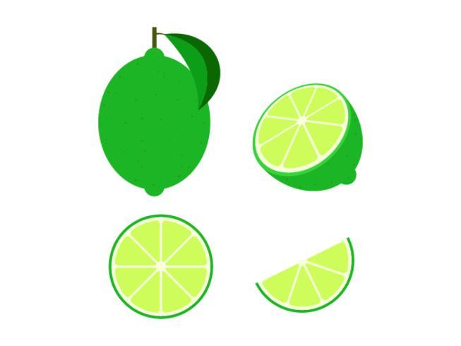 Ensemble de citron vert frais isolé sur fond blanc - illustration vectorielle