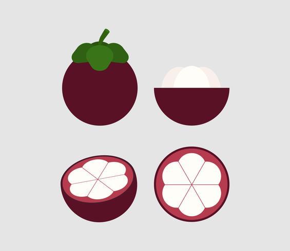 illustration vectorielle de jeu de mangoustan isolé sur fond