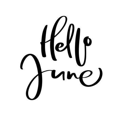 Handtecknad typografi bokstäver text Hej juni. Isolerad på den vita bakgrunden. Rolig kalligrafi för hälsning och inbjudningskort eller t-shirt print design kalender