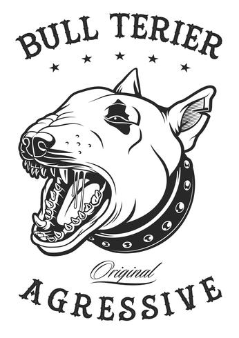 Bull terrier vector illustration