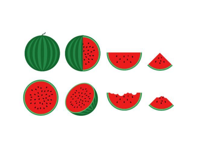 vector illustration of fresh watermelon set isolated on white background