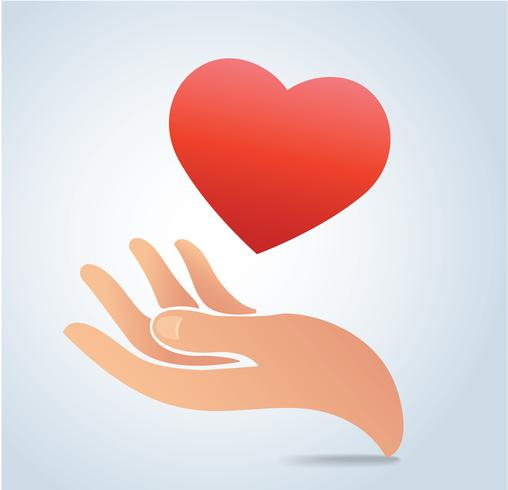 hand holding the heart vector