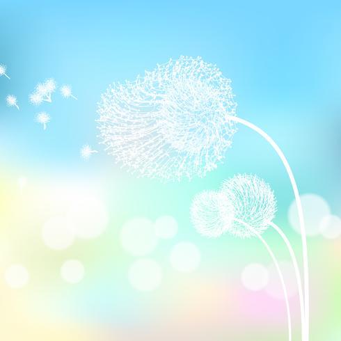 Fleur blanche dans la nature. vecteur