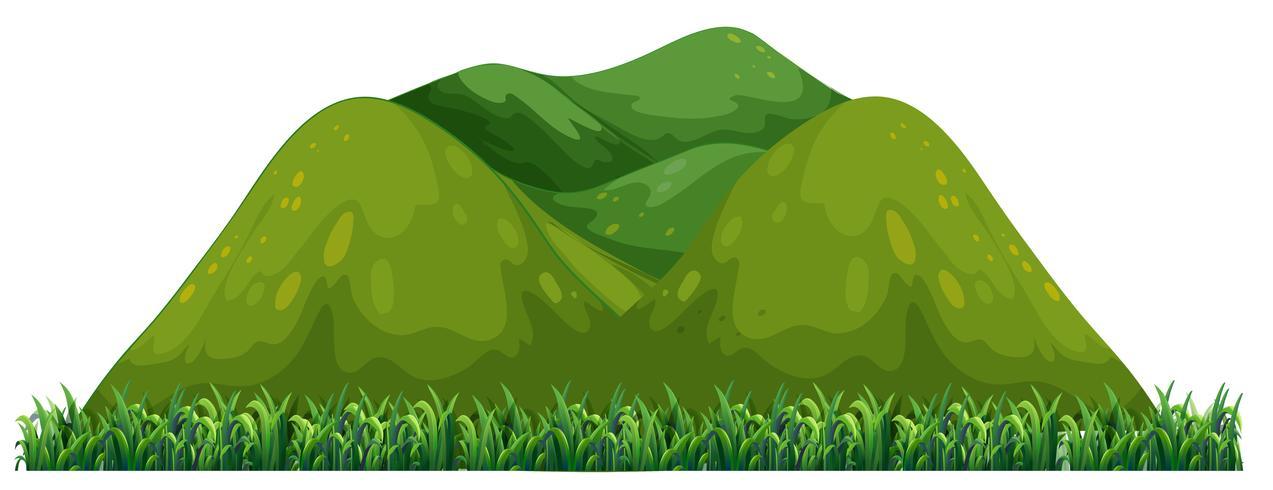 Montagne verte isolée sur fond blanc