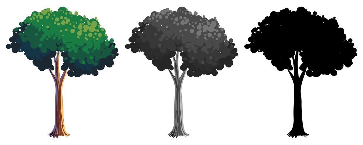 Set di albero isolato vettore