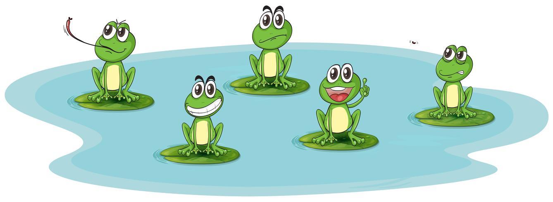 una rana y agua vector