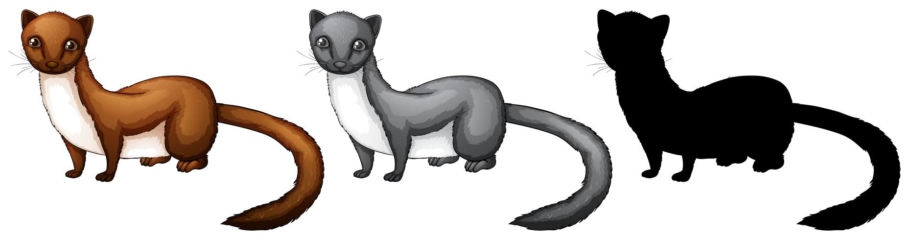 Set of weasel character