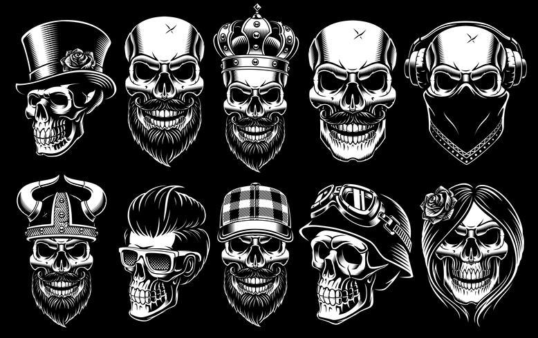 Set of different skulls. vector