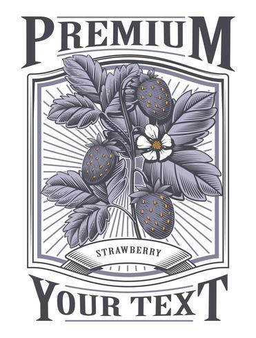 Rótulo vintage de morango vector