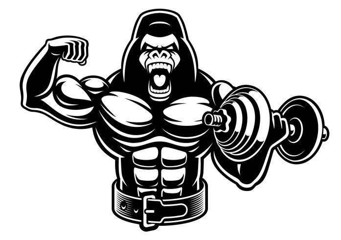 Vector illustration of a muscled gorilla with dumbbell