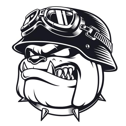 Bulldog biker with helmet vector
