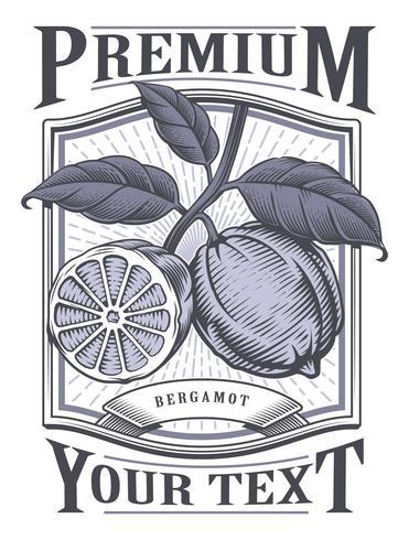 Etiqueta vintage de vector de bergamota